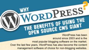 Wordpress: Vorteile als Infografik