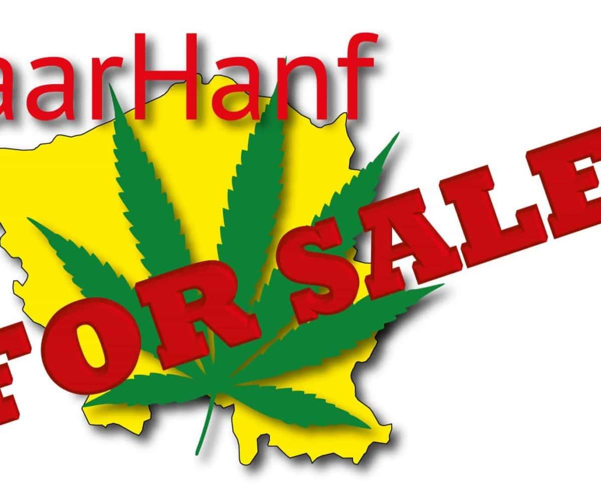 Aufräumen: SaarHanf for sale